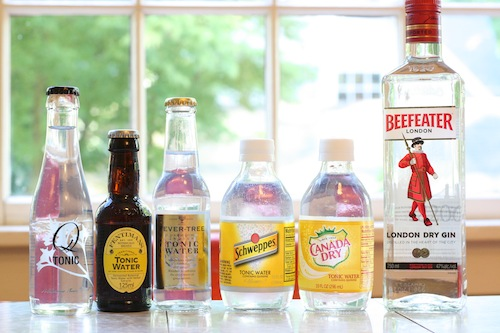 Best Tonic For Gin – Canada Dry vs Fever Tree vs Schweppes and More