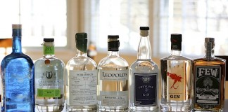 Top 10 American Gins