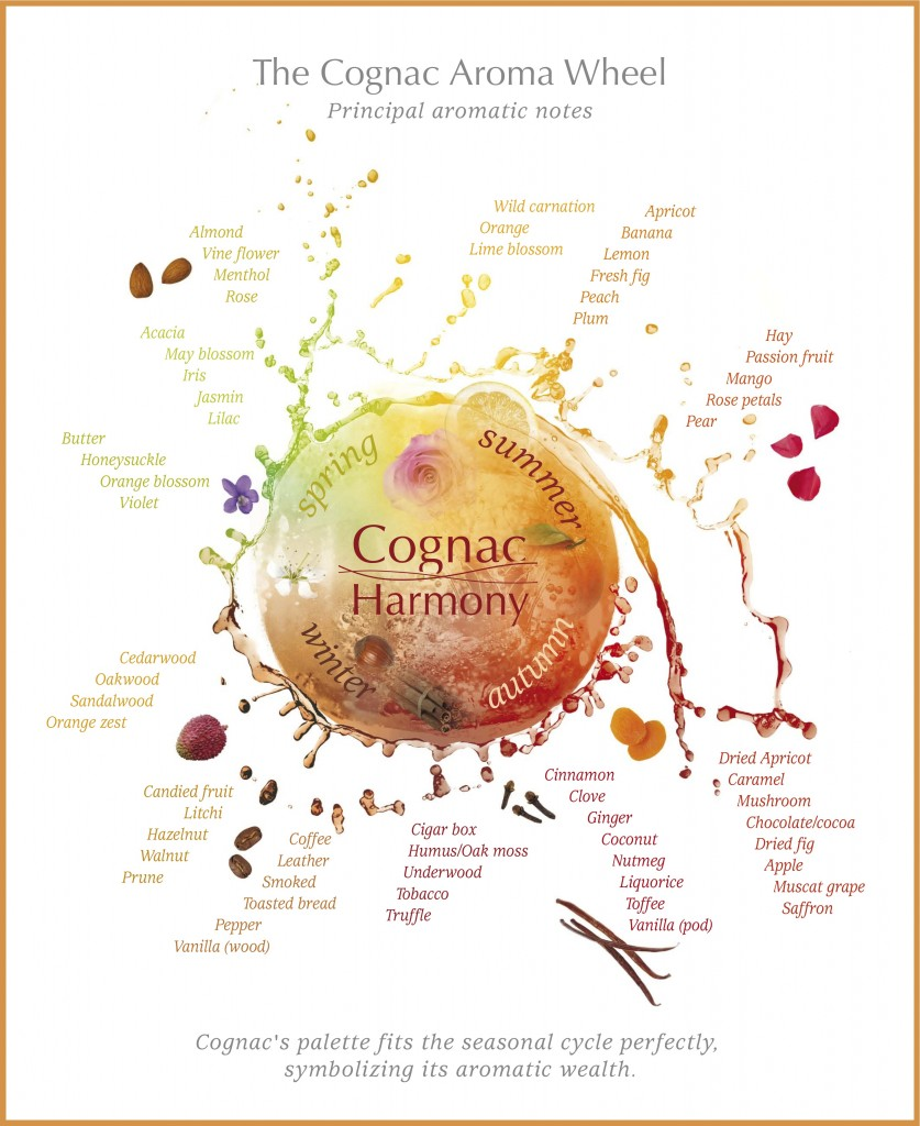Cognac Flavor and Aroma Wheel