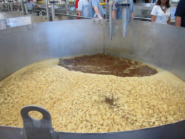 Fermenting Agave