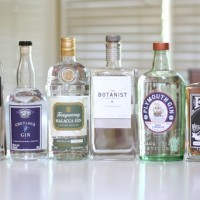 What's In With Gin