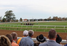 Keeneland's Unique Viewing Experience