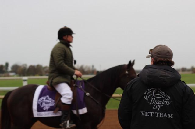 Lexington Not Louisville Is The Heart Of Horse Racing